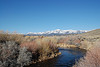 East Walker River, NV
